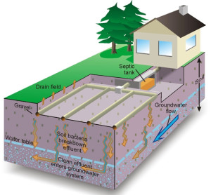 Septic System Percolation